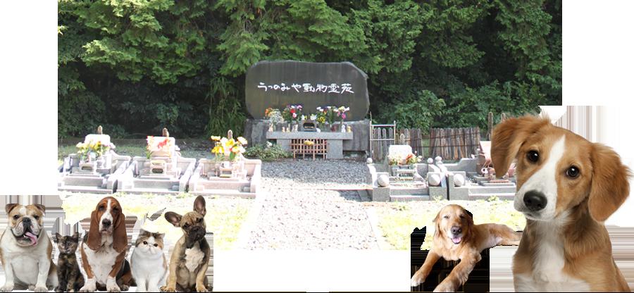 うつのみや動物霊苑